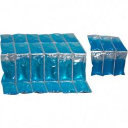 THERMOS Lot de 2 boites a glace  - 200g