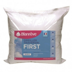 BLANREVE Lot de 2 oreillers FIRST 60x60cm