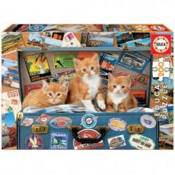 EDUCA  200 petits chats voyage