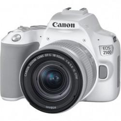 CANON 250D Appareil photo Reflex + Objectif 18-55 IS STM