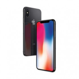 Apple iPhone X 256 Go Gris sideral - Grade C