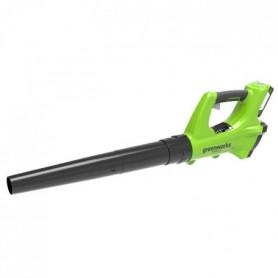 GREENWORKS Souffleur axial électrique G24ABK2 - 24 V