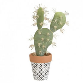 Cactus Plat - En pot ethnique noir