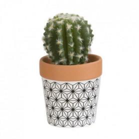 Mini Cactus boule - En pot ethnique noir